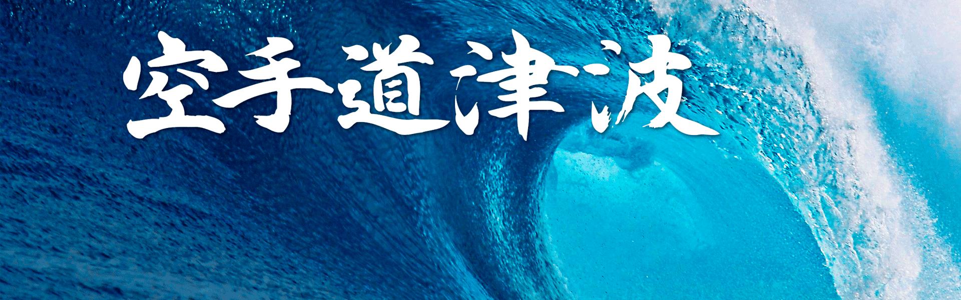 slider2-tsunami